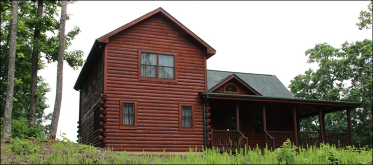 Professional Log Home Borate Application